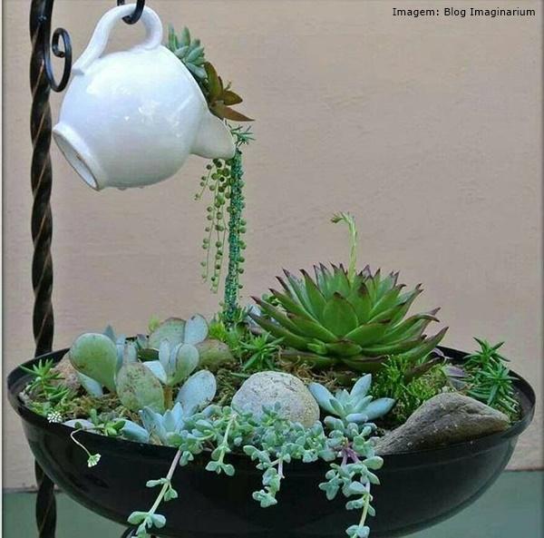 Ventiladores e luminárias Spirit - Blog Myspirit - vaso com suculentas - jardins criativos