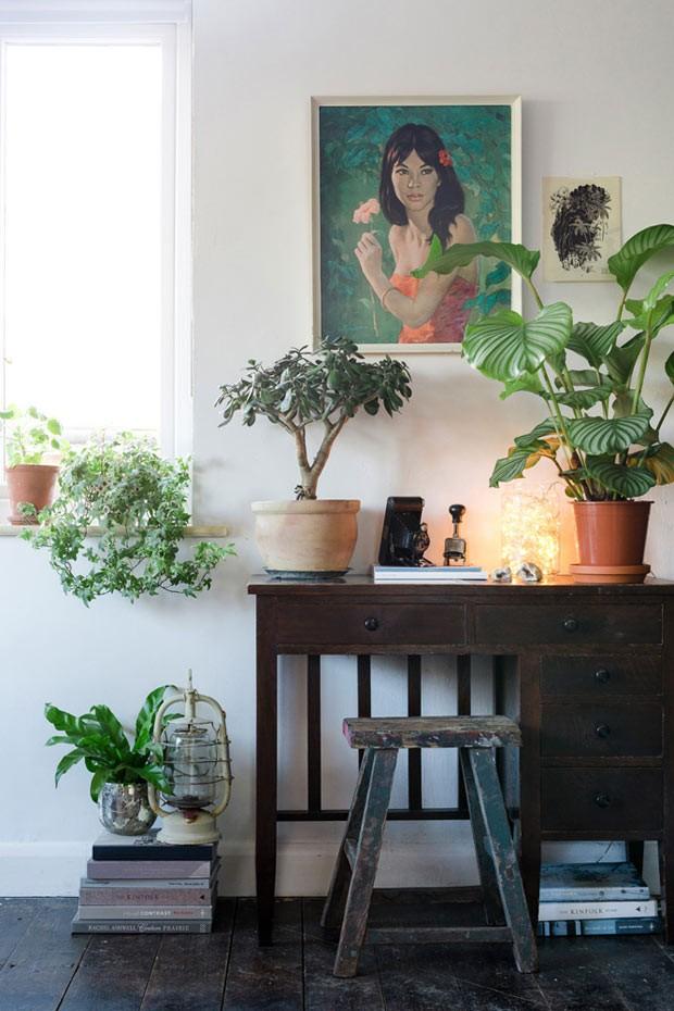 ventilador de teto Spirit - Blog Myspirit - plantas dentro de casa - dicas de decoração