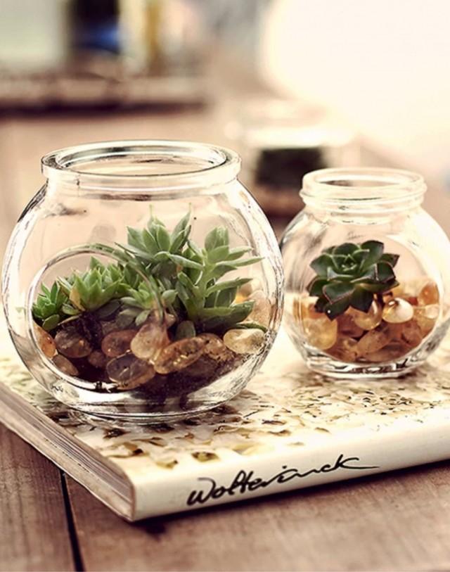 Ventilador de teto Spirit - Blog Myspirit - suculentas - decorar a casa na primavera